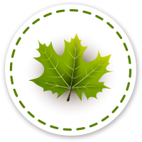 Information on the Maple Industry